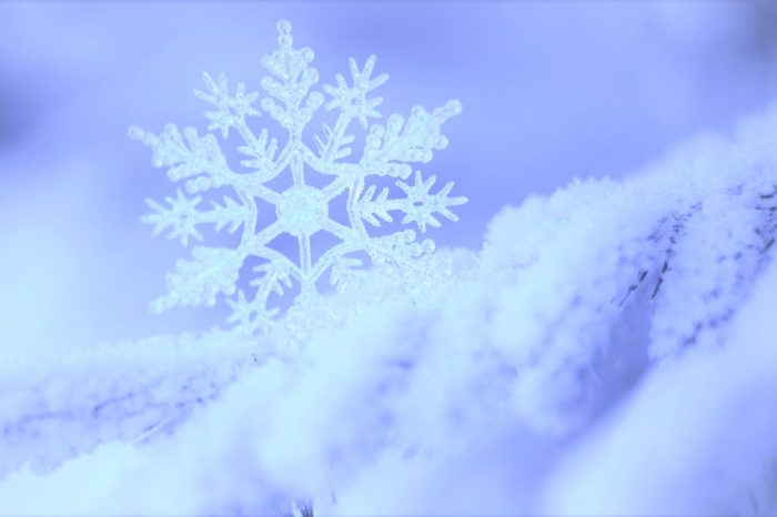 Новый Год на базе «На Калиновке»